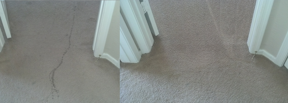 before-after-carpet-04